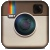 Sweet Cats Of Instagram