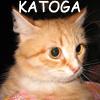katoga.livejournal.com