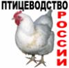 ptitsevodstvo.livejournal.com
