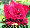 tasha_jardinier.livejournal.com