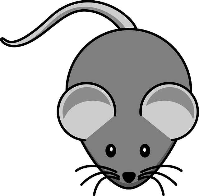 Word story – mouse potato