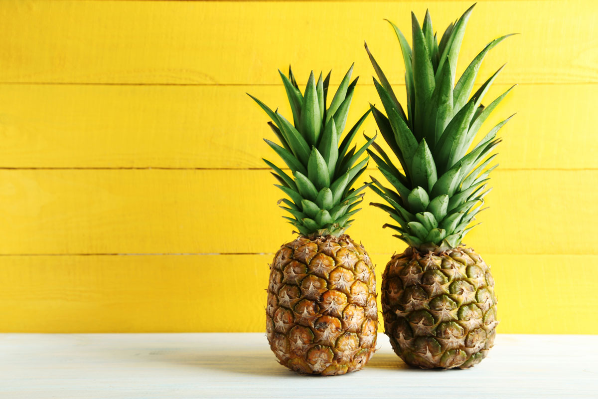 Word story - get the rough end of the pineapple