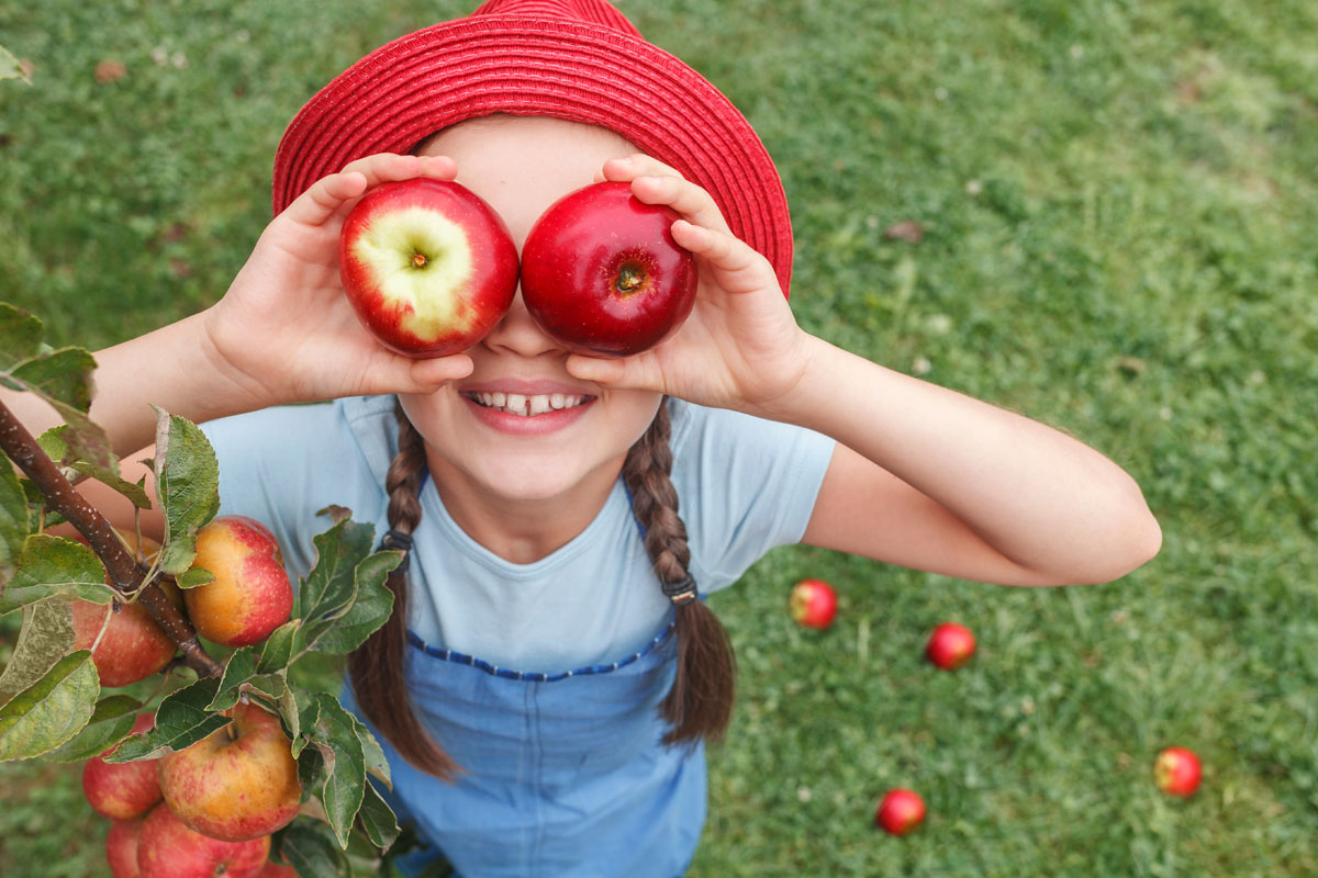 Word story – apple of one's eye