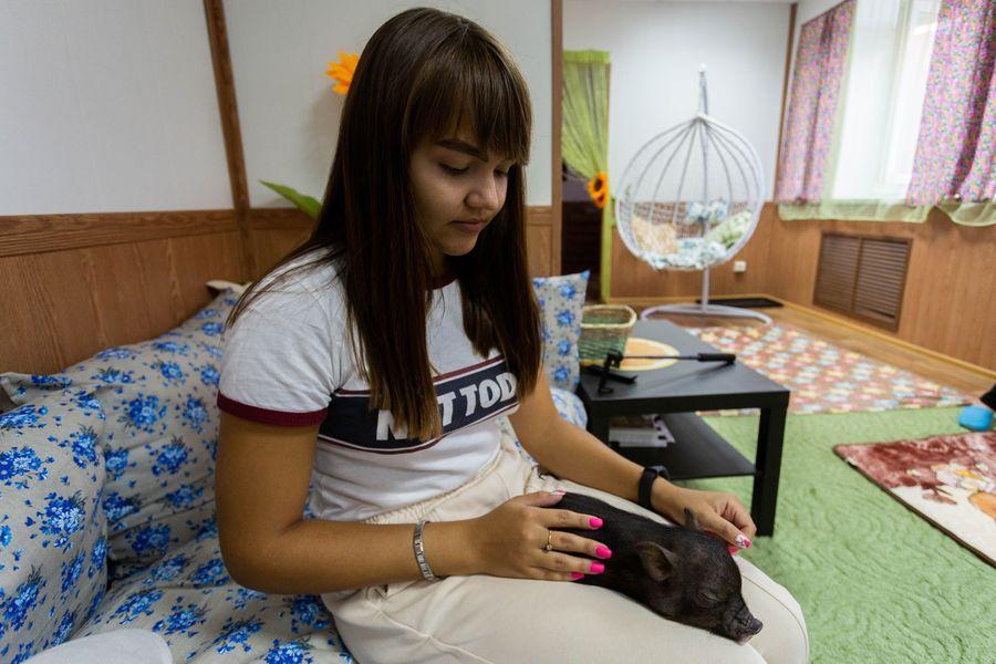 Фото Невозможно устоять: семейство мини-пигов влюбляет в себя новосибирцев 13
