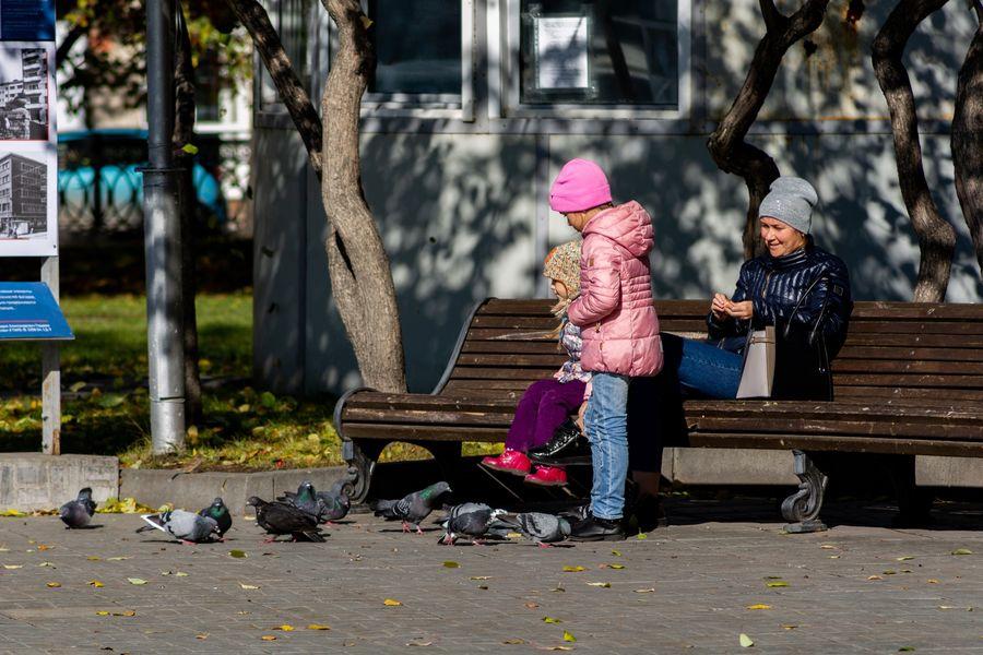 Фото Подарок октября: новосибирцы вышли шуршать листьями в последний тёплый день осени 2