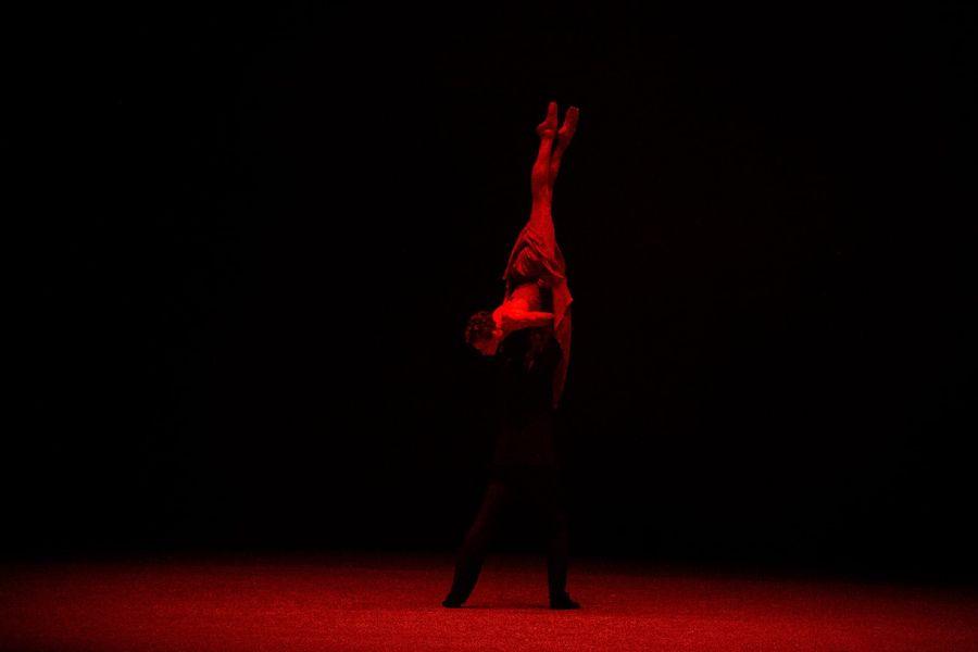 фото Гала-концерт в НОВАТе: это надо видеть 7