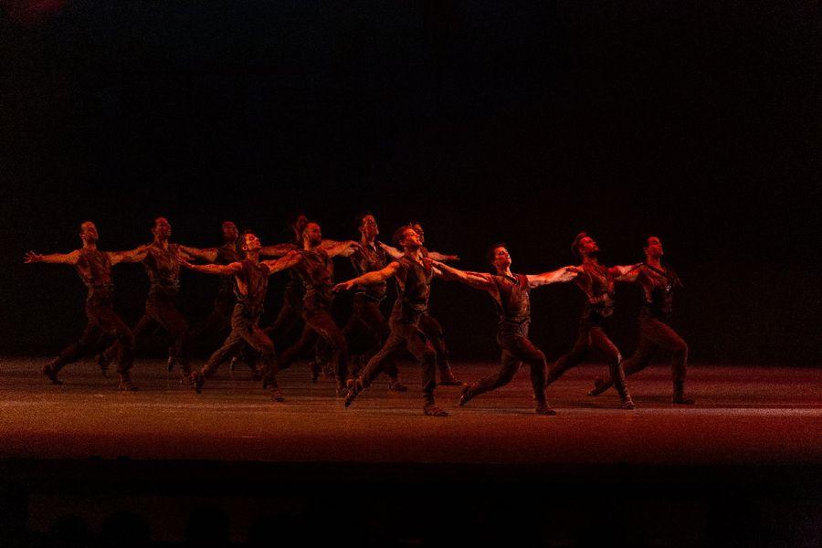 фото Гала-концерт в НОВАТе: это надо видеть 20