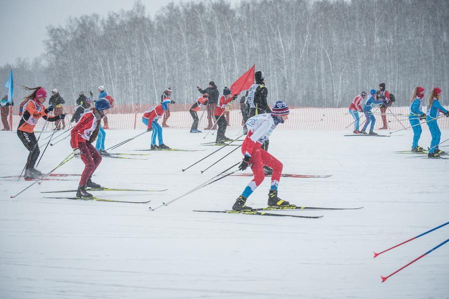 фото Влюблённые в лыжи: массовый заезд в Новосибирске 60