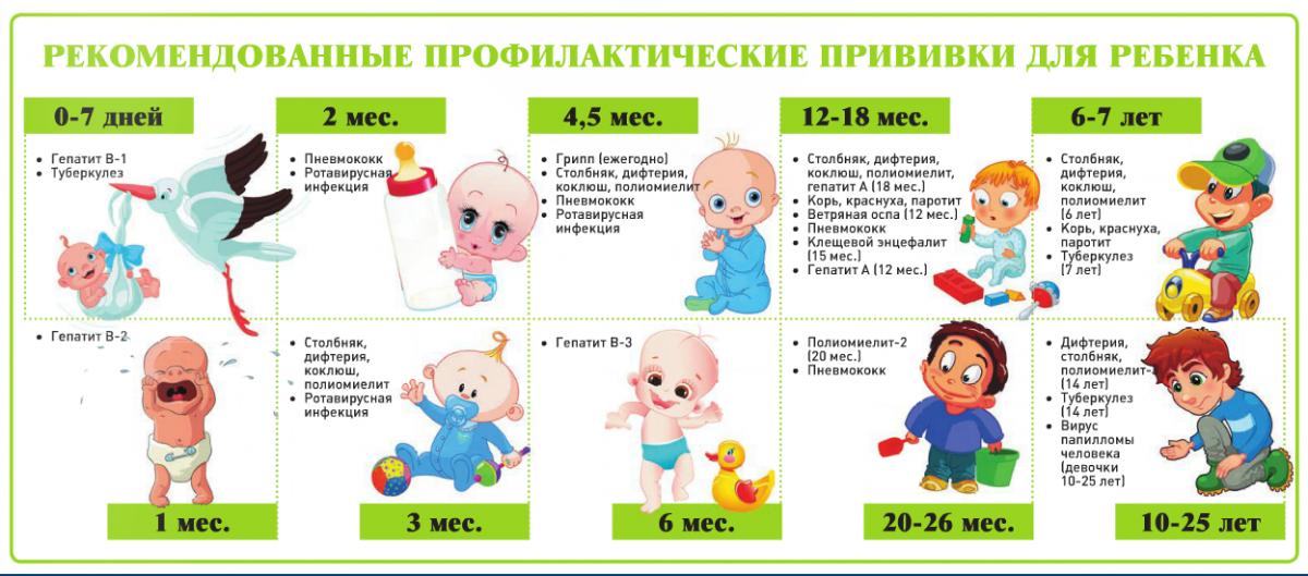 каледарь прививок за 2016 год коллаж gym1515sz.mskobr.ru