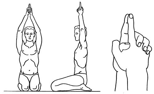 Секреты целительства Сат Нам Расаян :: Блог о йоге :: Портал о йоге Хануман.ру