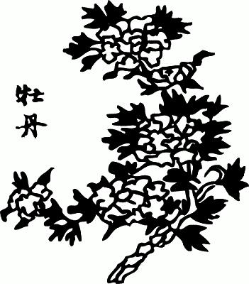 Вишня. Энциклопедия символов  Цветущая Сакура Png